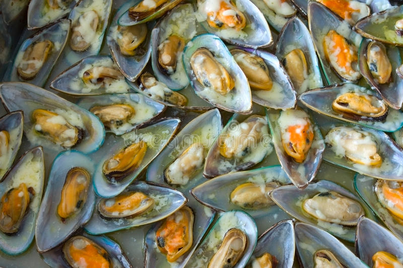 Download Oyster Platter stock photo. Image of expensive, mussel - 16417236