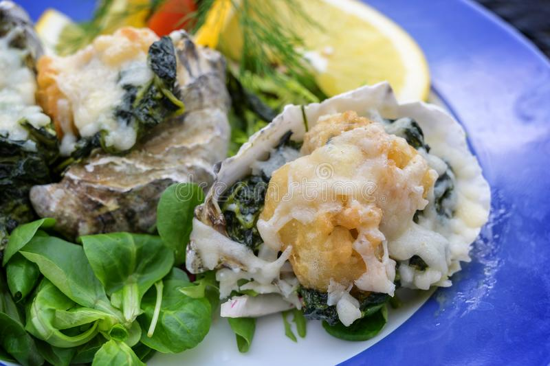 Oyster Rockefeller, baked au gratin with parmesan cheese, herbs and spinach, served with salad and lemon slices on a blue plate, royalty free stock photos