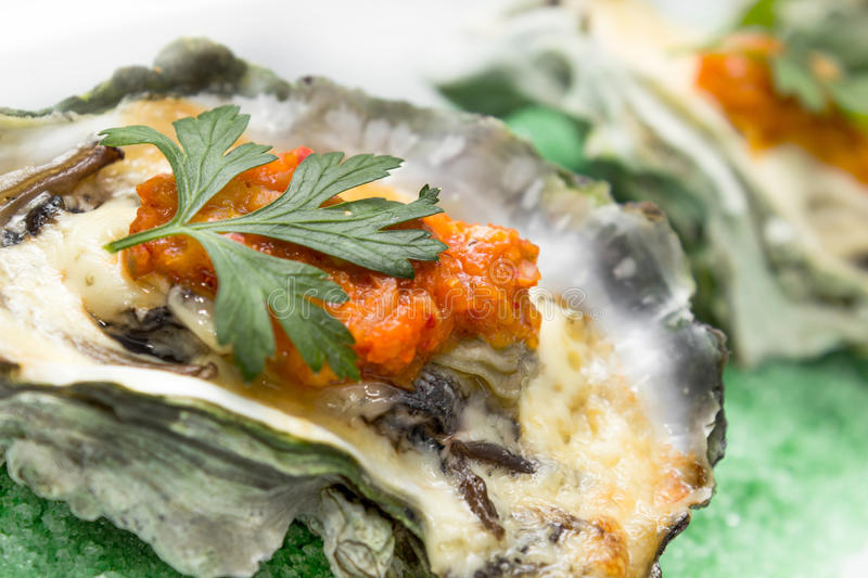 Oyster shell with cheese stock photography