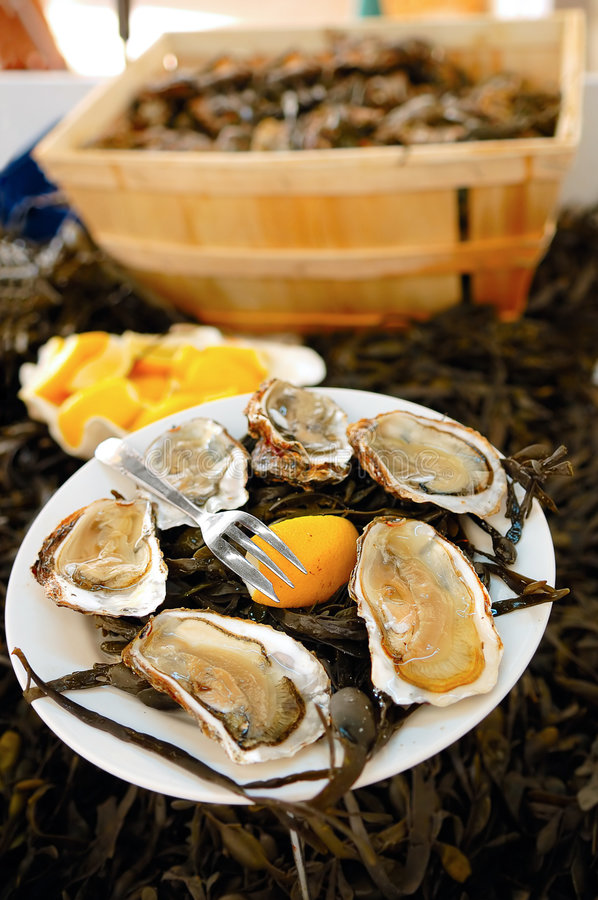 Download Oysters stock photo. Image of open, celebration, angle - 4460080