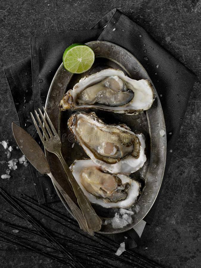 Oysters from above royalty free stock photos