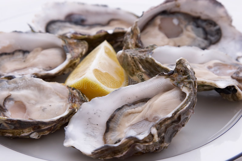 Oysters and Lemon stock photography