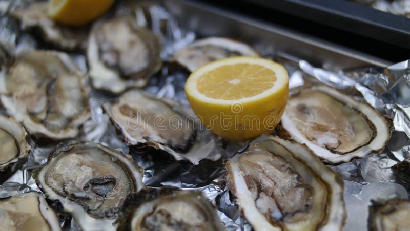 Oysters&Lemon royalty-vrije stock fotografie