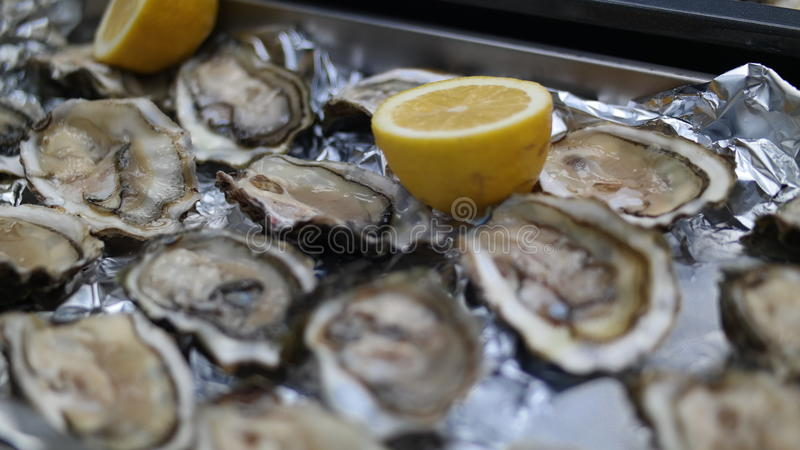 Oysters and lemon. Oysters delicacy from which you can cook many interesting dishes stock photography