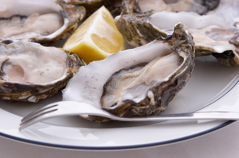 Oysters, Lemon And Fork Royalty Free Stock Photos