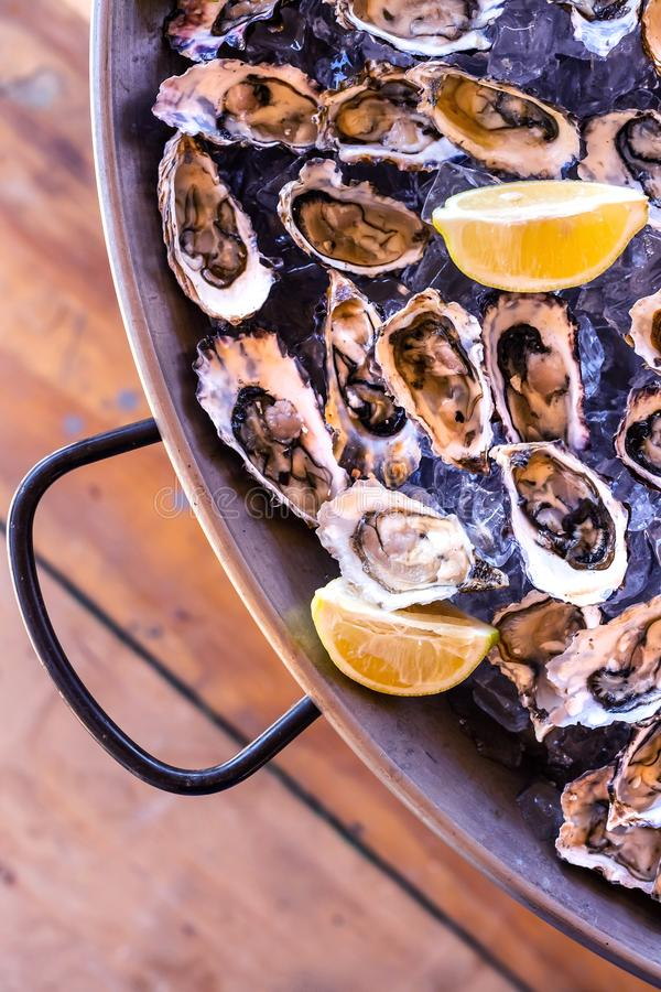 Oysters and lemon wedges in serving pan. Oysters served on ice stock photos