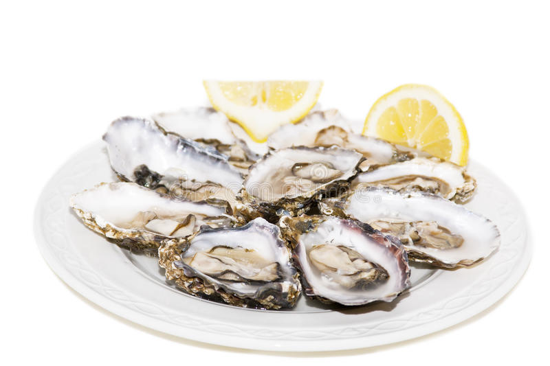 Oysters And Lemon On White Background Royalty Free Stock Image