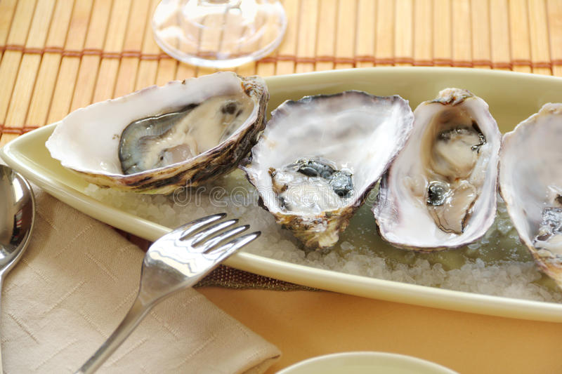 Download Oysters Natural stock photo. Image of yummy, meat, delicious - 26352424