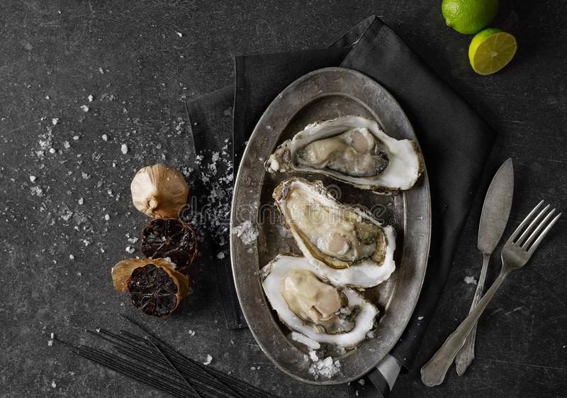 Oysters in a plate from above royalty free stock photo