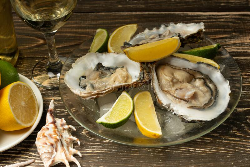 Oysters in a plate with ice and lemon, with a glass of white dry wine on a wooden background. Seafood, restaurant, exquisite taste royalty free stock photos