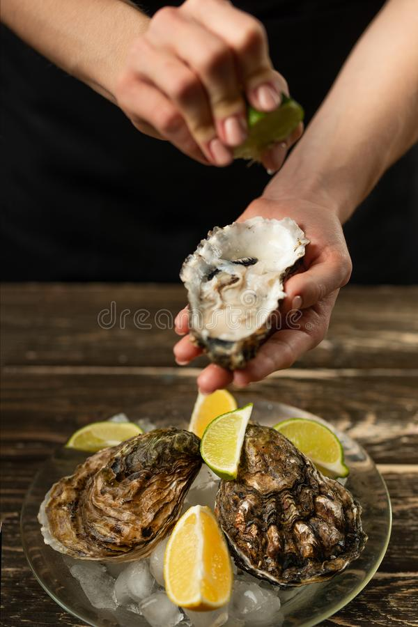 Oysters in a plate with ice and lemon, in the hands of the chef pour lime on a wooden background. Seafood, restaurant, delicious stock image