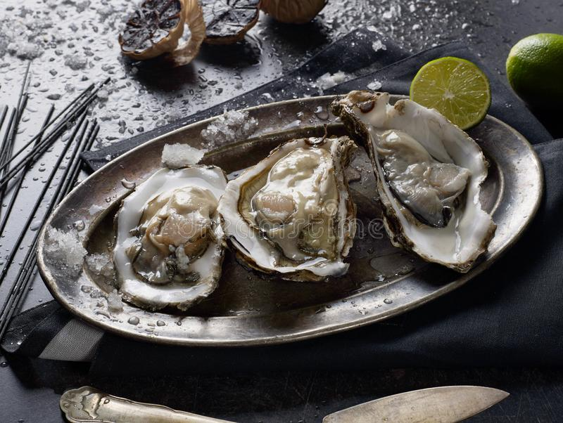 oysters on the table royalty free stock images