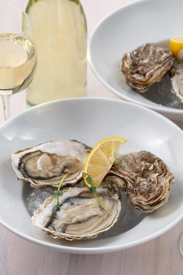 Oysters with white wine on the table. Two plates with oysters and a pair of glasses of wine and a bottle on the table closeup stock photography