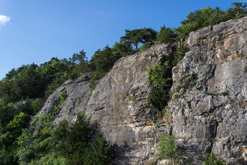 Ozark Cliffs och trädlandskap arkivbilder