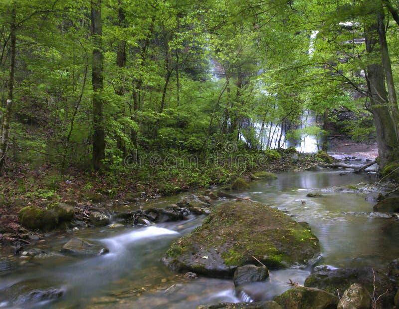 Ozark Creek image stock