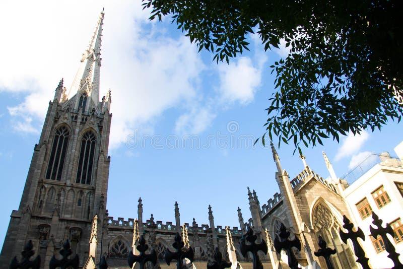 Ozdabia kościół i drzewa z niebieskim niebem pod cieniem obraz royalty free