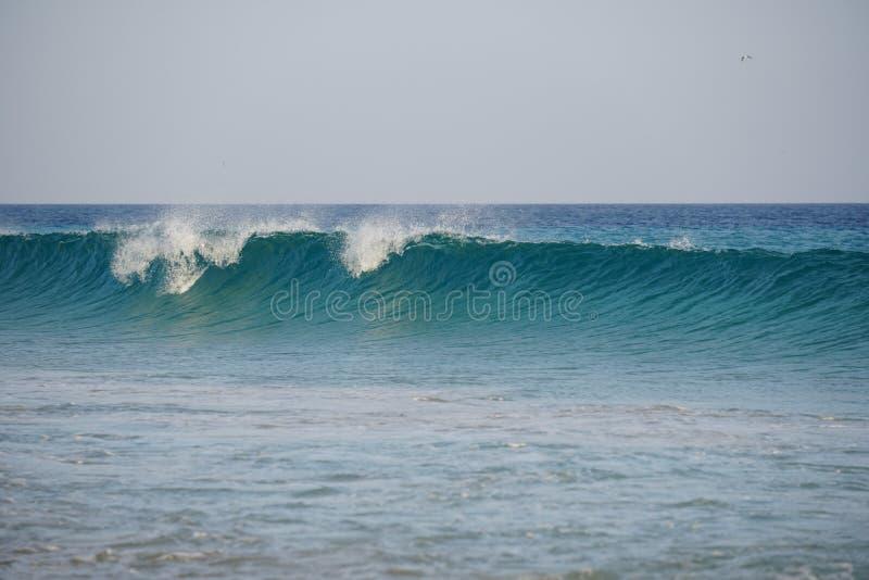 Ozean atlantisch Magiewellen, die auf dem Strandsand laufen stockfoto