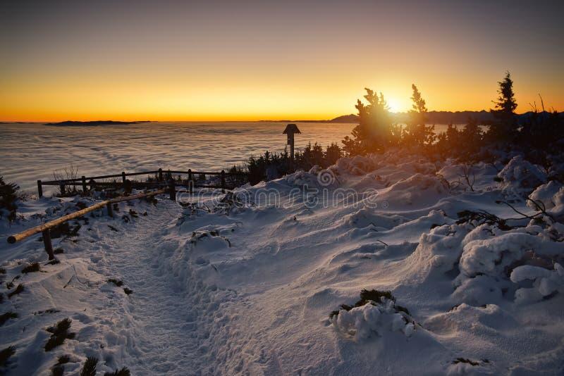 Ozean bewölkt sich über dem Tatra-Berg bei Sonnenaufgang Ansicht von Babia stockbilder