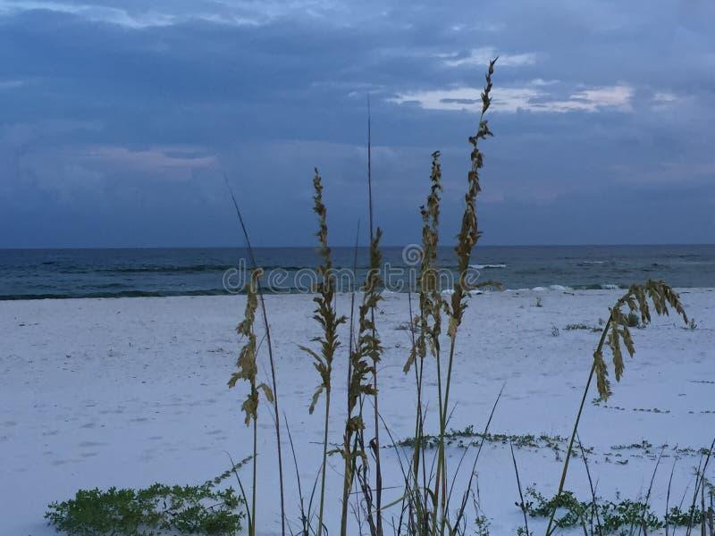 Ozean durch Seehafer lizenzfreies stockfoto