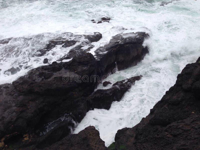 Download Ozean lassen weiden stockbild. Bild von ozean, wellen - 96925711