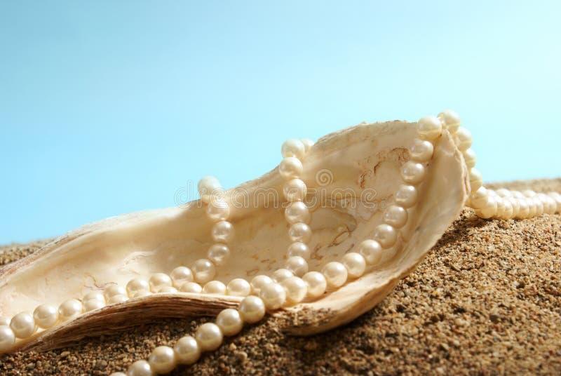 Ozean-Perlen lizenzfreies stockfoto