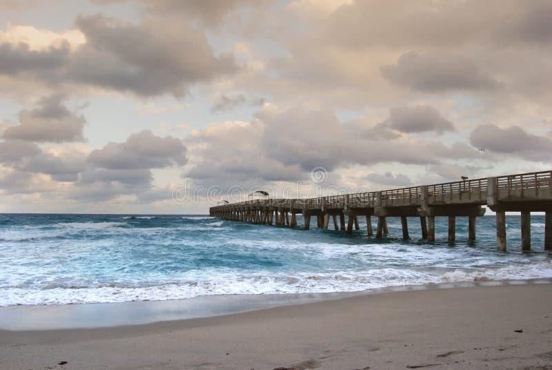 Ozean-Pier im See wert Süd-Florida stockbild