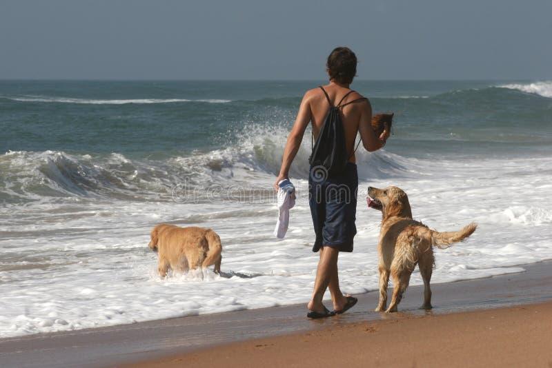 Ozean-Spaß lizenzfreie stockbilder