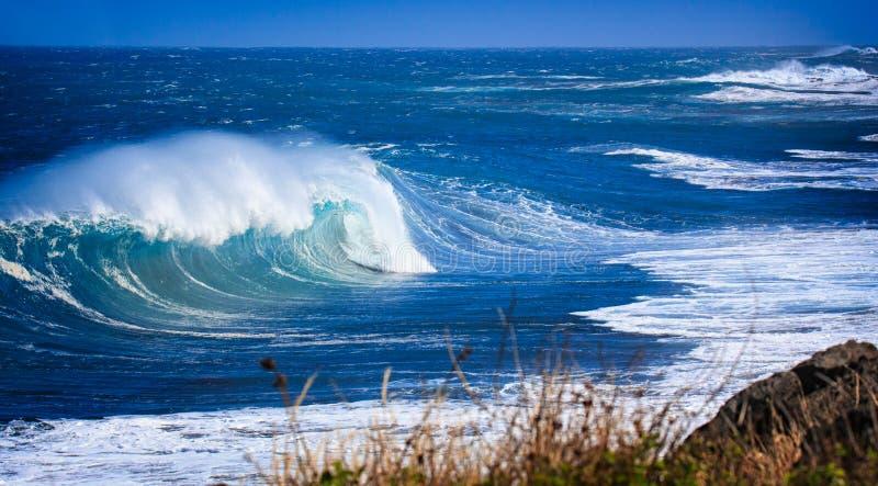 Ozean stark lizenzfreie stockfotografie