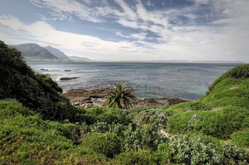 Ozean und Küste gestalten in Hermanus, Südafrika landschaftlich lizenzfreie stockbilder
