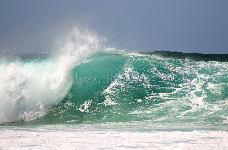 Ozean-Welle lizenzfreie stockfotografie