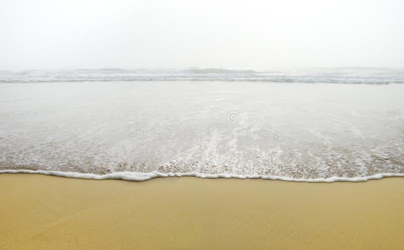 Ozean-Welle im Nebel lizenzfreies stockbild