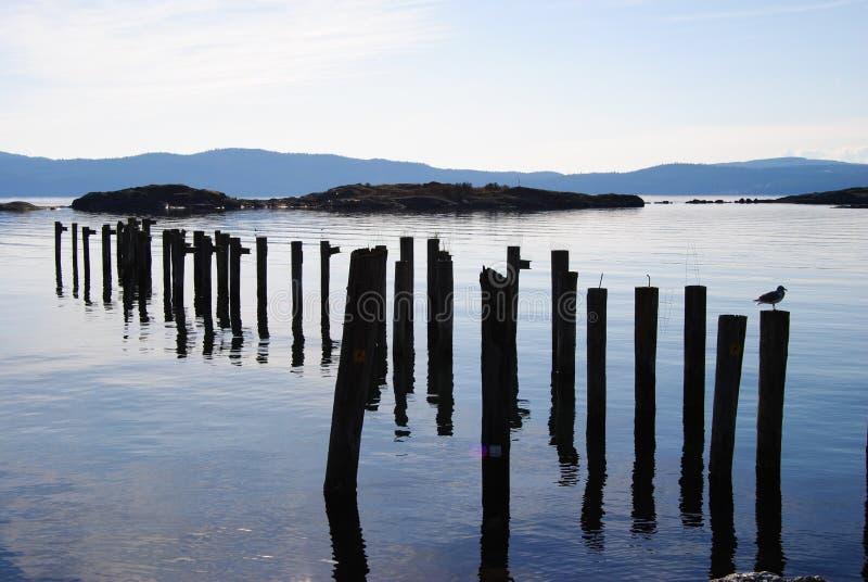Download Ozeanansicht stockbild. Bild von protokolle, meer, welle - 27733497