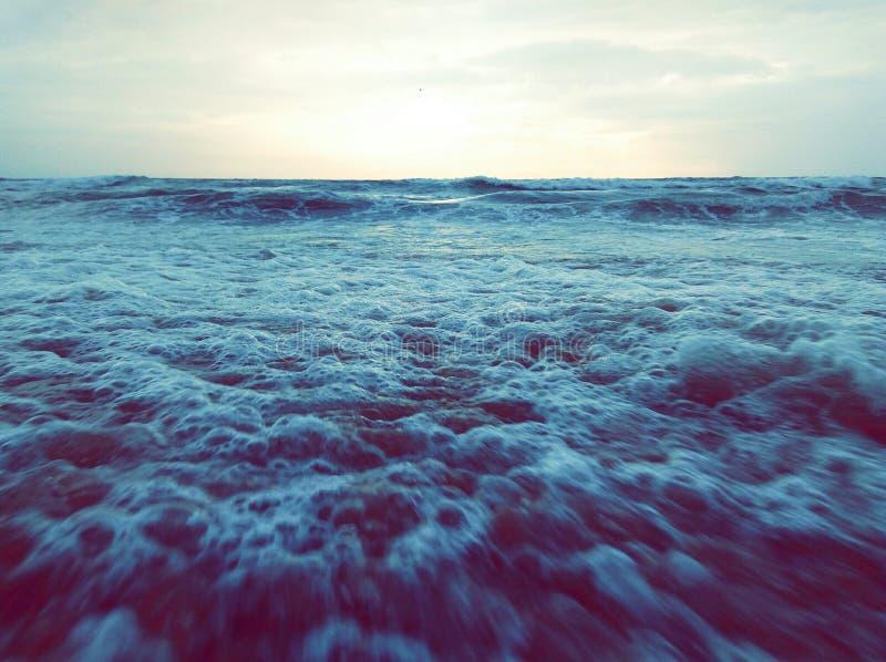Ozeanbrise lizenzfreie stockfotografie