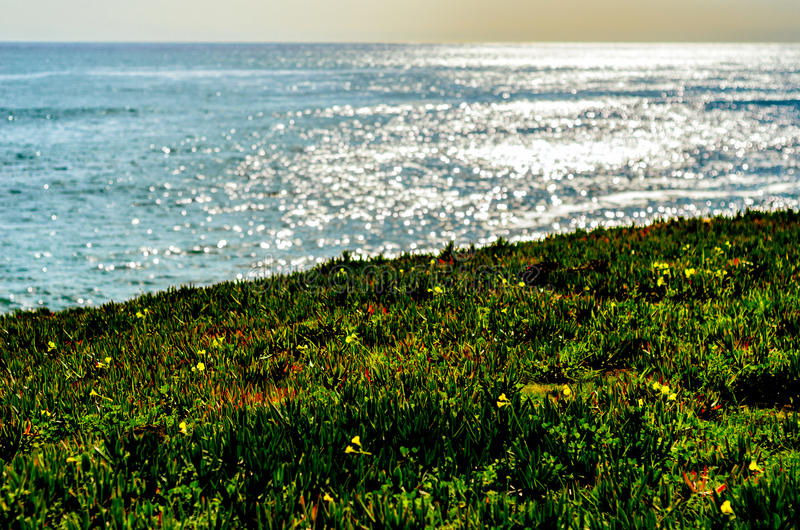 Ozeangreller glanz lizenzfreie stockfotografie