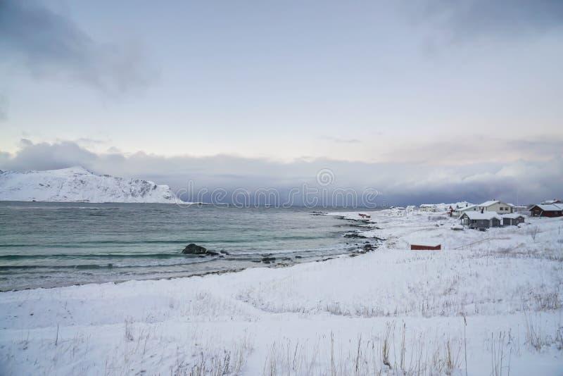 Ozeanküste voll des Schnees im Winter in Lofoten-Insel Norwegen lizenzfreie stockbilder
