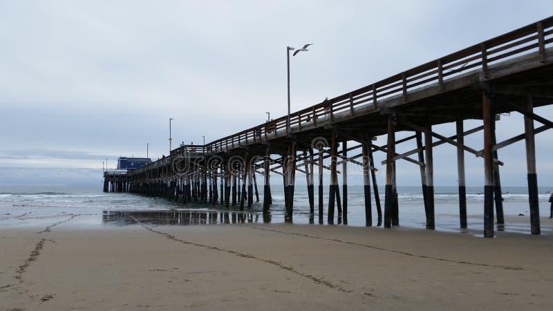 Ozeanufer-Pier stockfotografie