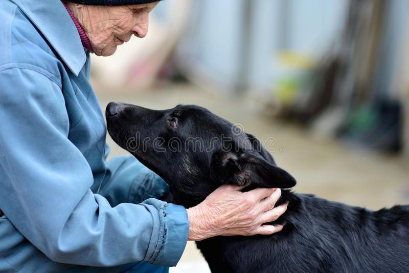 Ozersk, Chelyabinsk region, Russian Federation - 25 may 2019. An elderly woman in an animal shelter stock photography