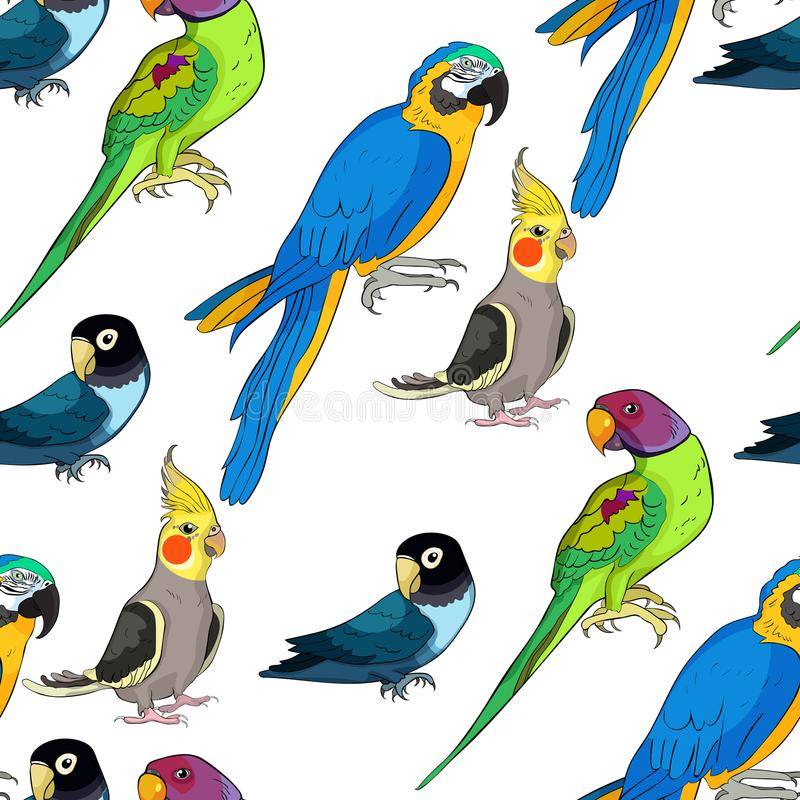 Ozherelovy indisk ringed papegoja för sömlös modell, maskerat stock illustrationer