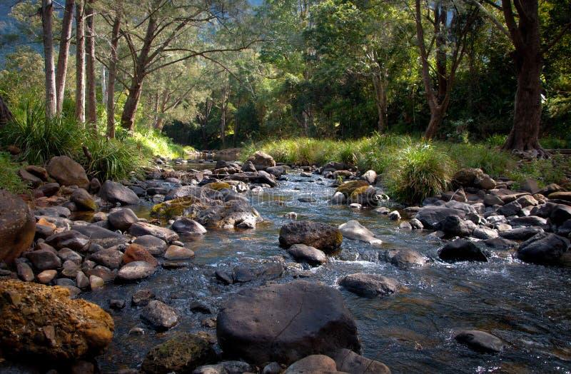 ozzy flod för underlag royaltyfri bild