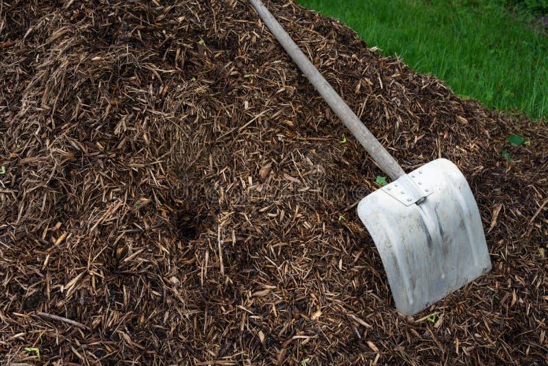 Pá de Shovelor na terra de jardinagem, ferramenta para cultivar imagem de stock royalty free