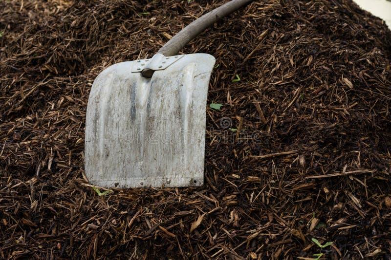 Pá de Shovelor na terra de jardinagem, ferramenta para cultivar imagem de stock
