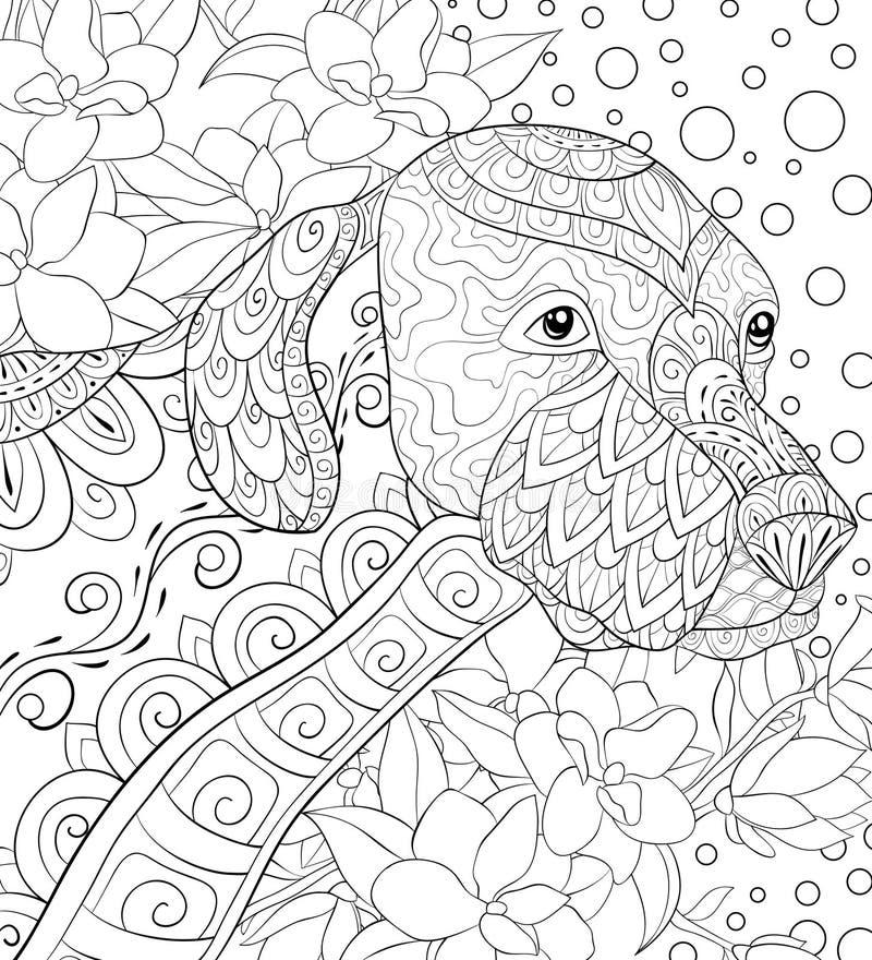 Página adulta da coloração um cão bonito no fundo floral para relaxar Ilustração do estilo da arte do zen ilustração royalty free