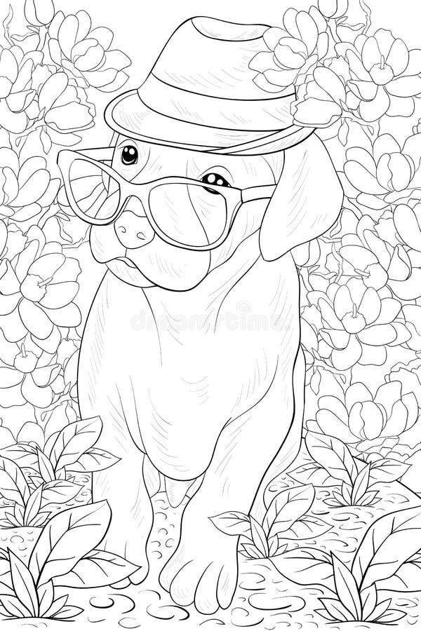 Página adulta da coloração um cão pequeno bonito com vidros e chapéu para relaxar Linha Art Style Illustration imagens de stock