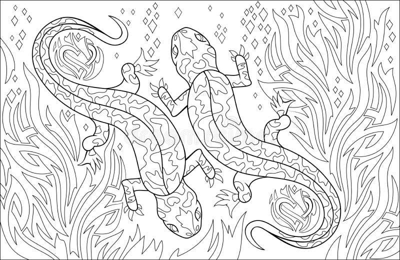 Página Blanco Y Negro Para Colorear Dibujo De Las Salamandras De Los ...