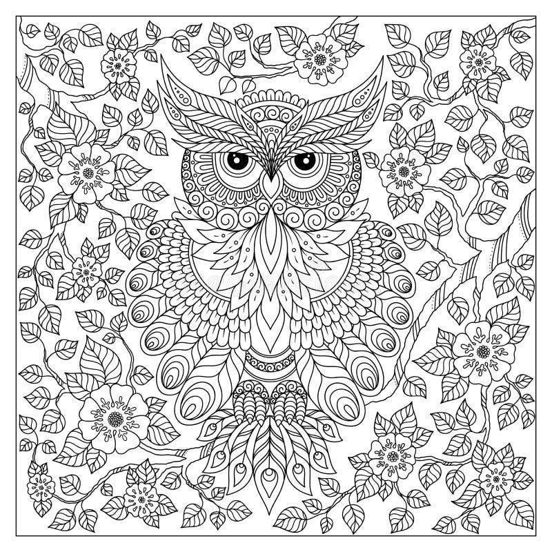 Página da coloração com coruja bonito e quadro floral ilustração stock