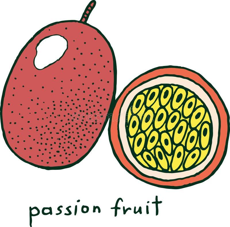 Página del colorante de la fruta de la pasión Arte colorido del garabato del vector gráfico libre illustration