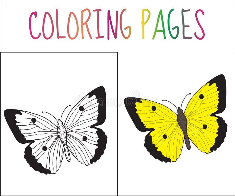 Página Del Libro De Colorear Mariposa Versión Del Bosquejo Y Del ...