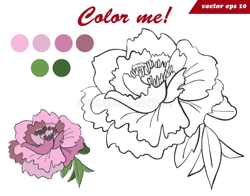 Página del libro de colorear para los niños y los adultos con la flor de la peonía stock de ilustración
