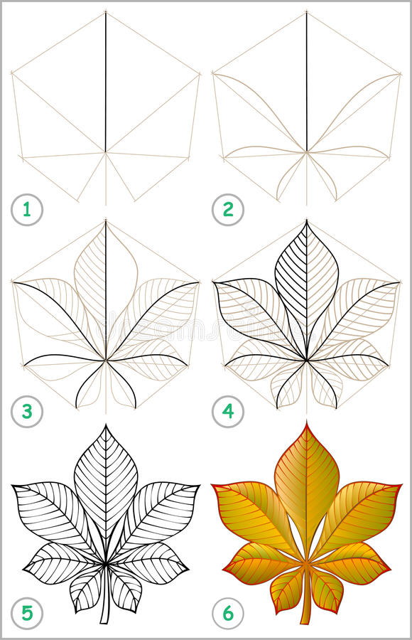 A página mostra como aprender ponto por ponto tirar uma folha da castanha ilustração royalty free