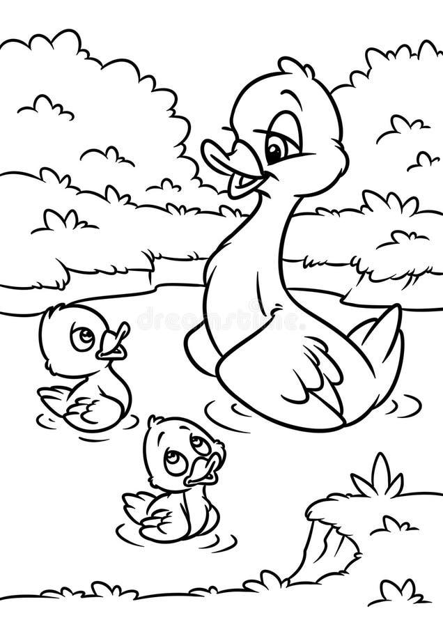 Pagina Da Coloracao Com Os Patinhos Na Lagoa Ilustracao Do Vetor